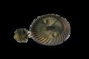 Коническая пара для Смоленск МШУ 0,9–125 d 53,5х10, d 8х20